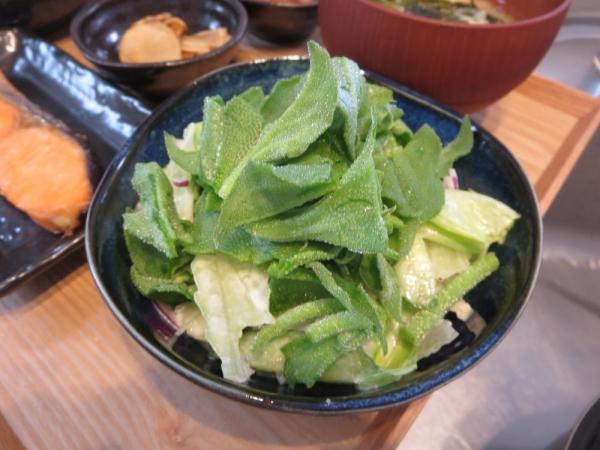 野菜サラダ、アイスプラントのせ