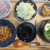 ローストポークとミニ湯豆腐の献立