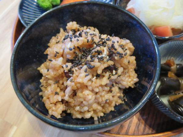 酵素玄米(寝かせ玄米)熟成途中